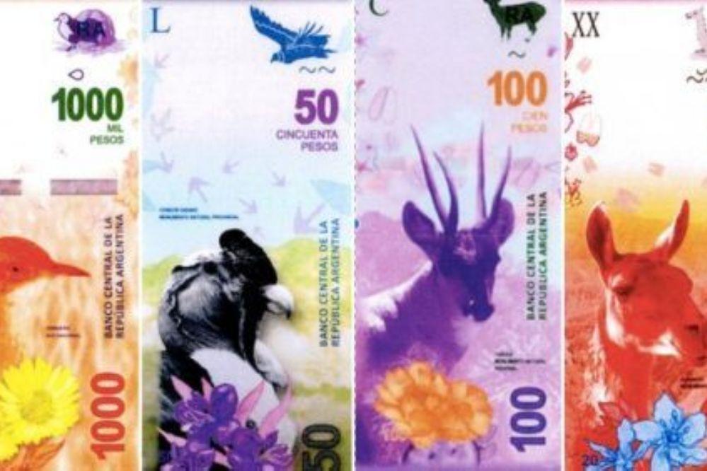 En 2017 reemplazarán los billetes con próceres por otros con animales-Entrá y mirá.