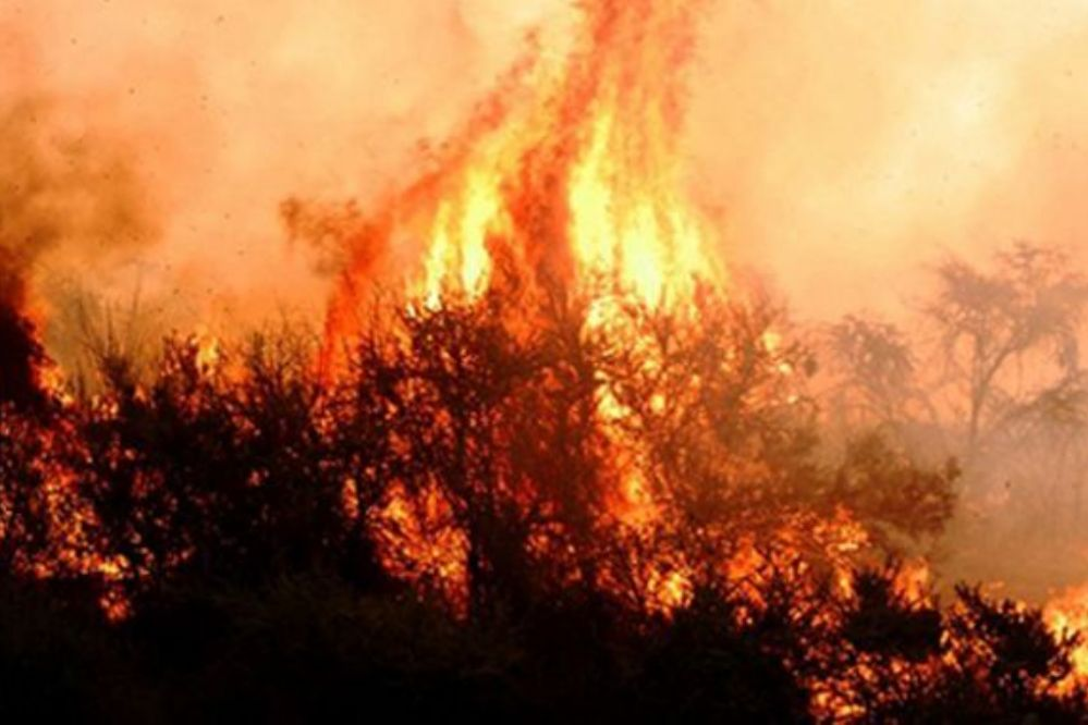 INCENDIOS RURALES: UN FOCO ACTIVO EN CUCHILLO CO