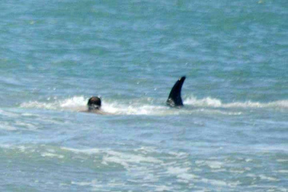 Video: nadaba en Monte Hermoso y se encontró con una orca